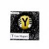 Y Harfi Cam Magnet
