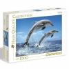 1000 Parça Puzzle : HQ. Dolphins