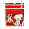 Snoopy ve Friends Bardak Altlığı 2'li Set