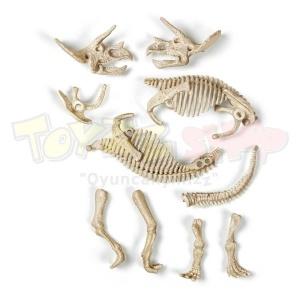 Arkeolog Oluyorum - Triceratops