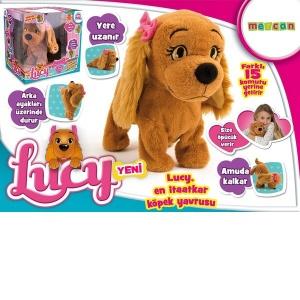 Lucy Akıllı Köpek