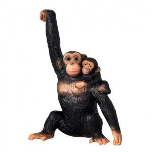 Yavrulu Şempanze
