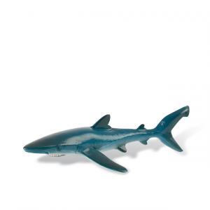 Mavi Köpekbalığı