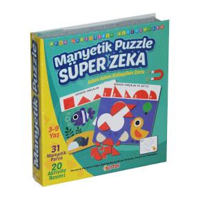 Manyetik Puzzle Süper Zeka