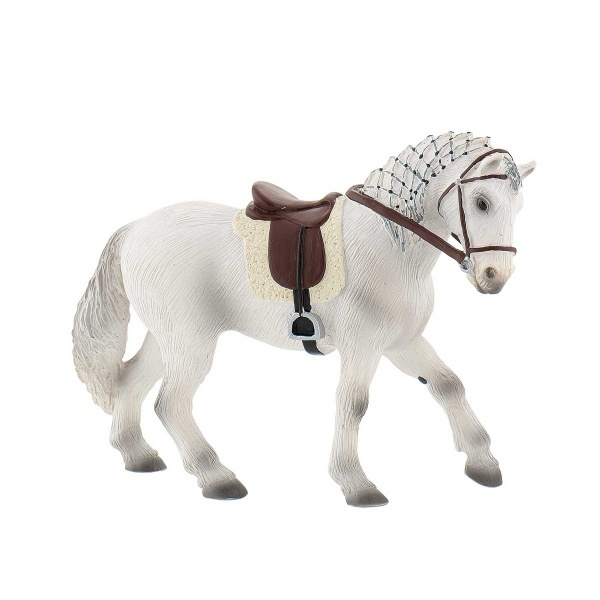 Lipizzaner At