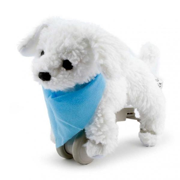 My Puppy Bıchon Charlie