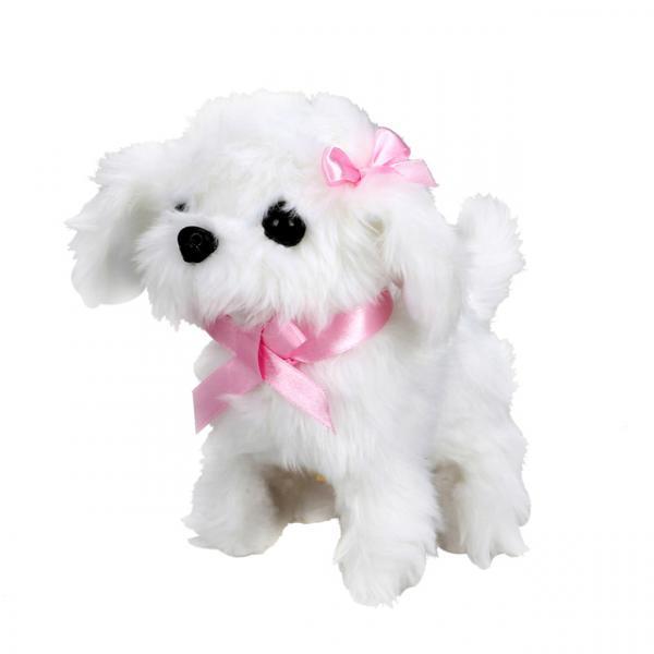 Jamina Sevimli Köpek Maltese
