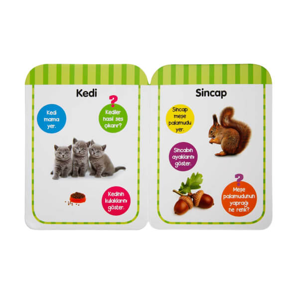İlk Kitabım - Hayvanlar (18-24 Ay)