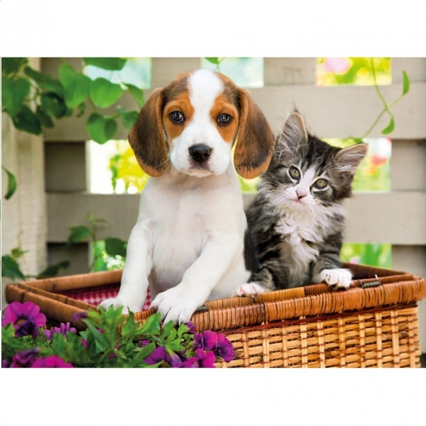 1000 Parça Puzzle : HQ. The Dog and The Cat