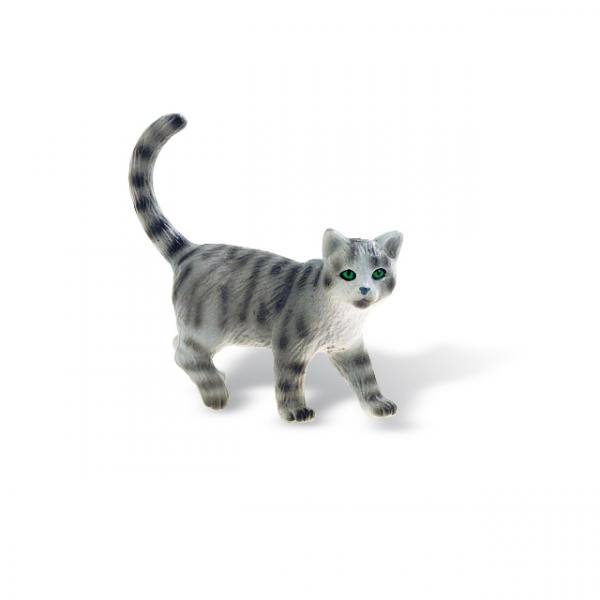 Minka Kedi